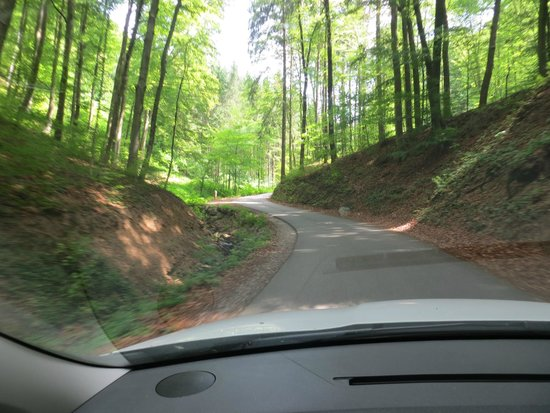 Burgruine Aggstein: The road up to the castle is steep - a 20% grade