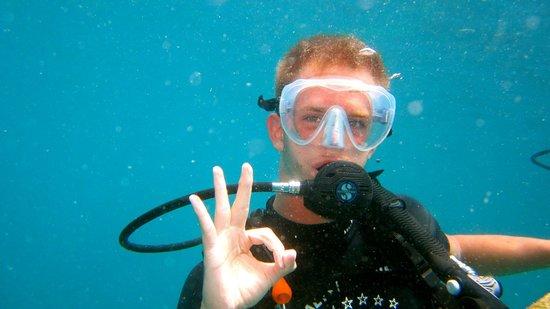 Calypso Diving: Doing Okay