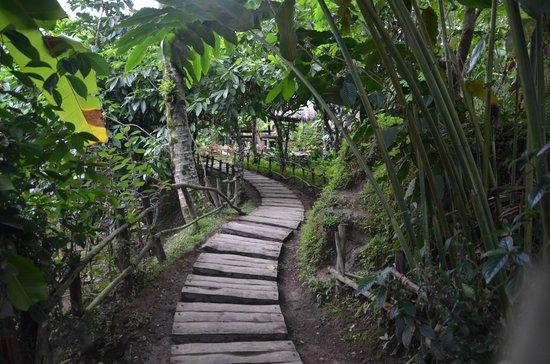 Bali Pulina Agro Tourism: Bali Pulina