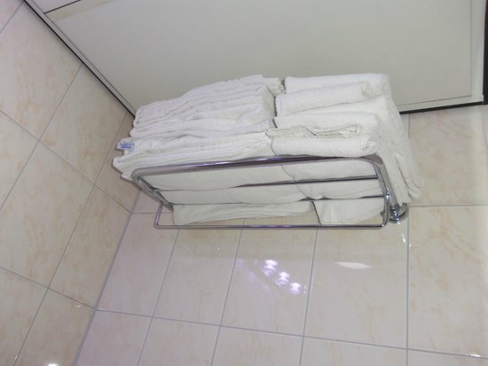 Amsterdam Downtown Hotel: Towels