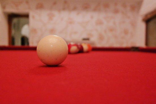 RAAS Devigarh : Pool Room
