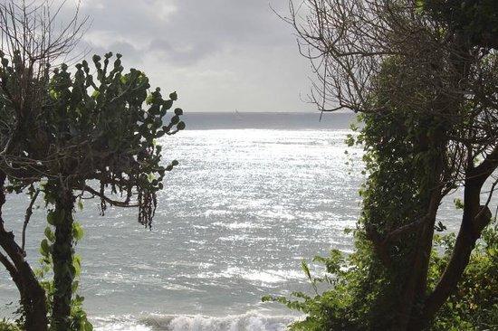 Protea Hotel Dar es Salaam Amani Beach: View/Location