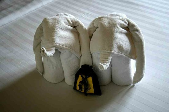 Hotel M Chiang Mai: Welcoming elephants