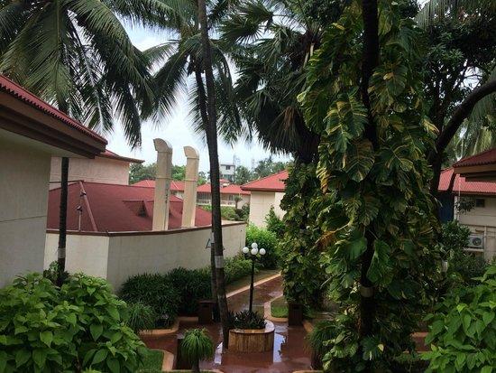 Radhika Beach Resort: View from a room