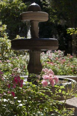 Maximilian Munich Apartments & Hotel: Brunnen im Rosengarten