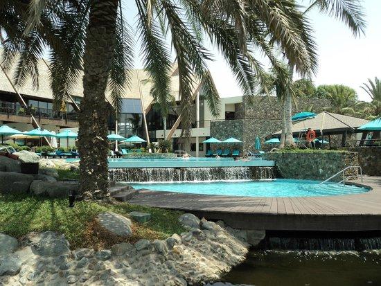 JA Palm Tree Court: Pools