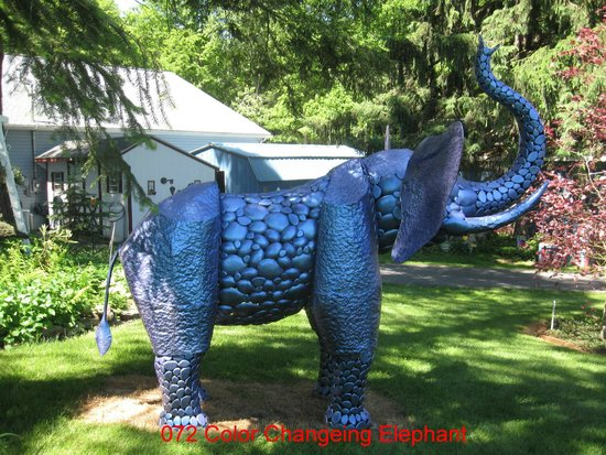 Mister Ed's Elephant Museum: Colour Changing Elephant - Changes with the temperature