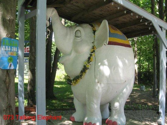 Mister Ed's Elephant Museum: Talking Elephant, really