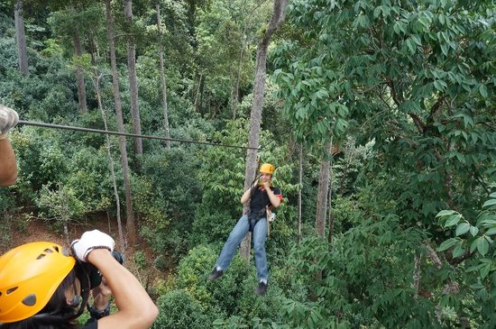 Jungle Flight : zipline