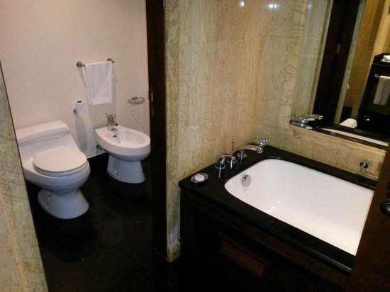 Jood Palace Hotel Dubai: Toilet