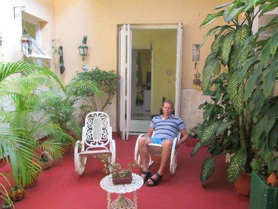 Casa Diana: sala de las plantas de Diana