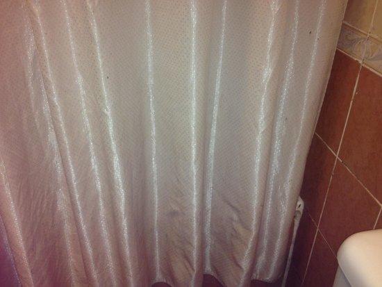 Hotel Soleil : Mild-dew infested