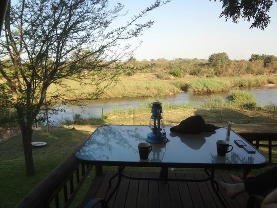 Sabie River Bush Lodge : View from room