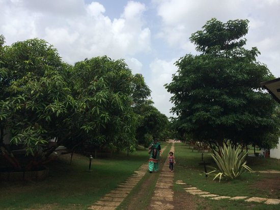 Club Mahindra Gir Resort: Way to the cottages