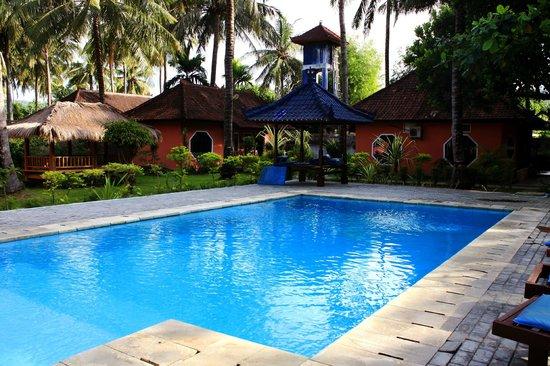 Surfers Inn : The pool area