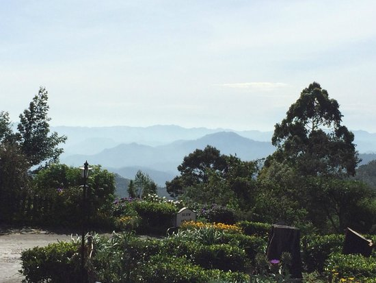 Heritance Tea Factory: view from hotel grounds