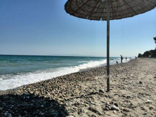 Mendi Hotel : Hotel Mendi beach
