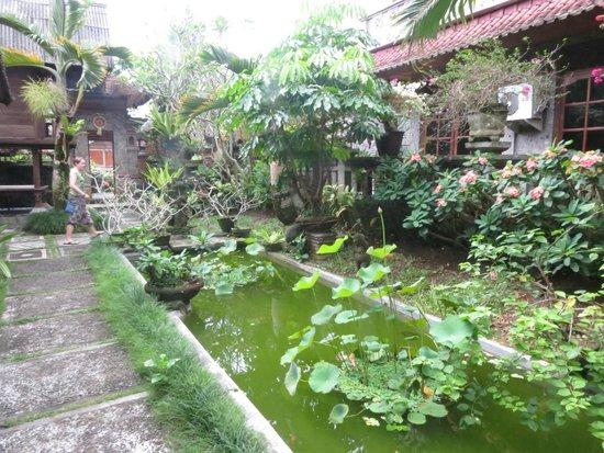 Gunung Merta Bungalows: Lush grounds