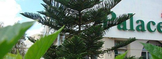 Palace Appart Hotel: espace vert