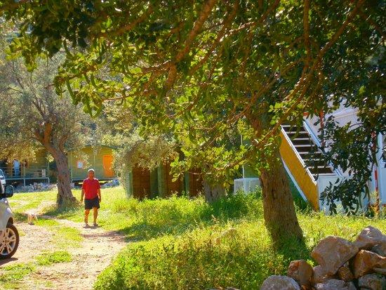 Tasucu, تركيا: bungalows 05053483308