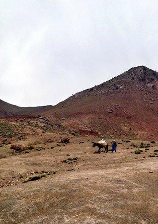 Andiamo In Marocco - Day Tours: Medio Atlante