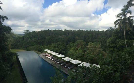Alila Ubud: Uitzicht van het restaurant op het zwembad