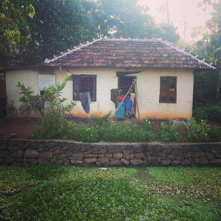 Athreya Ayurvedic Centre: Village house nearby