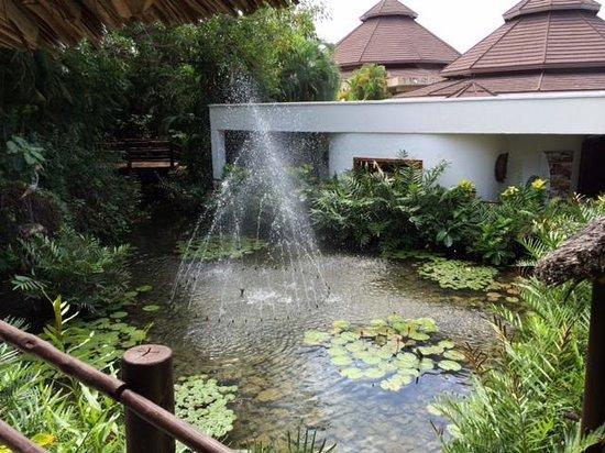 Leopard Beach Resort & Spa : a water garden