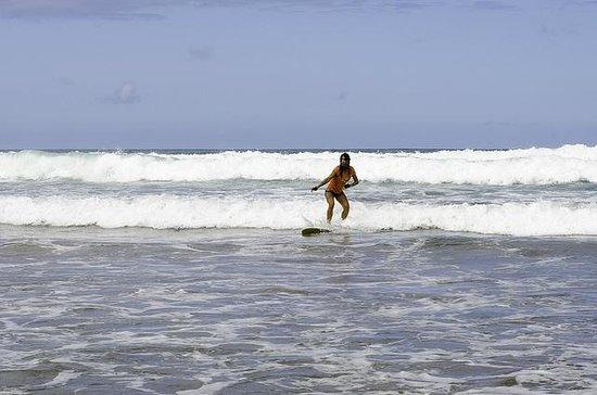Calima Surf School: Catch Wave!