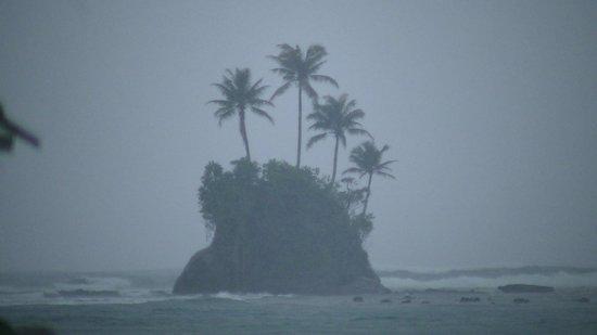Aura Surf Resort : Island Paradise