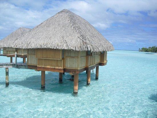 Bora Bora Pearl Beach Resort & Spa : 美しい水上バンガロー