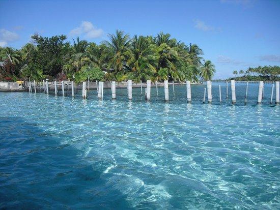Bora Bora Pearl Beach Resort & Spa : ボラボラ周辺の海(小島:モトゥ)