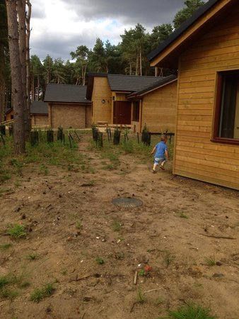 Center Parcs Woburn Forest: Grass needs to grow