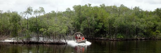 Jungle Erv's Everglades Airboat Tours : airboat
