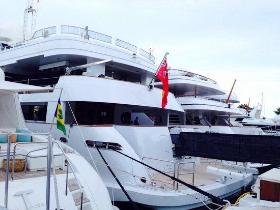 Puerto Banús Marina: Yachts