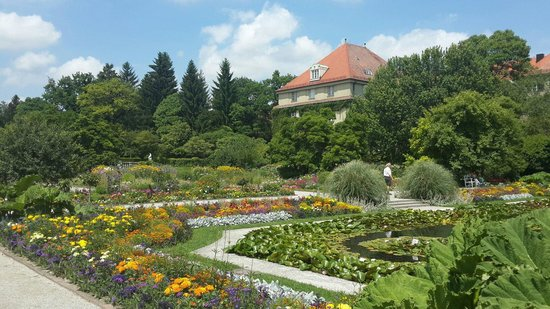 Botanischer Garten Muenchen-Nymphenburg: Very colorful