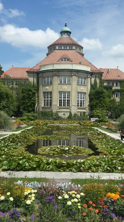 Botanischer Garten Muenchen-Nymphenburg: The pond