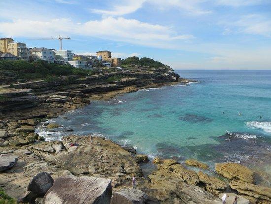 Bondi to Coogee Beach Coastal Walk : Blue sea views
