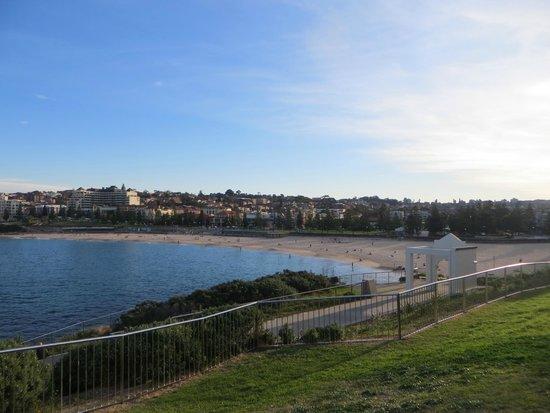Bondi to Coogee Beach Coastal Walk : View down to Coogee