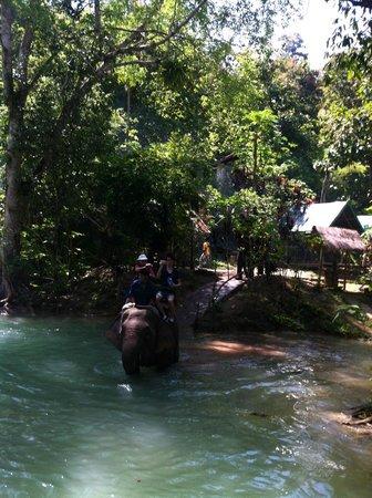 Tad Sae Waterfall : Elephant ride at the bottom falls