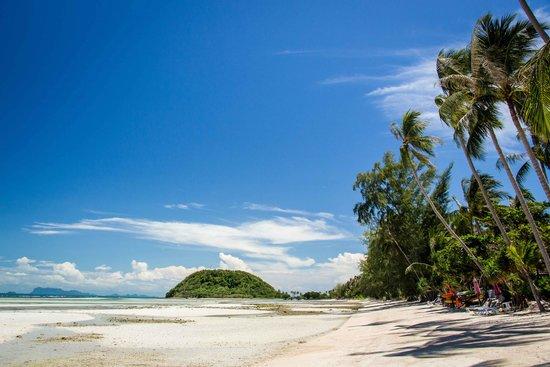 The Passage Samui Villas & Resort : Looking north up the beach