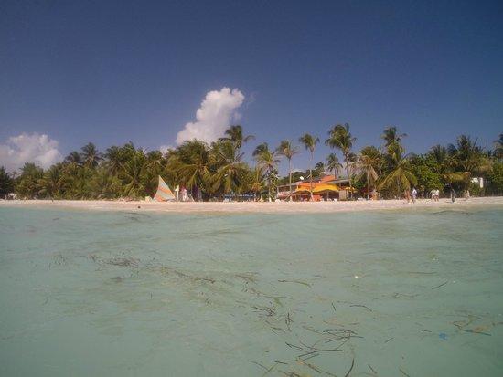 Cocoplum Beach Hotel : Desde el mar