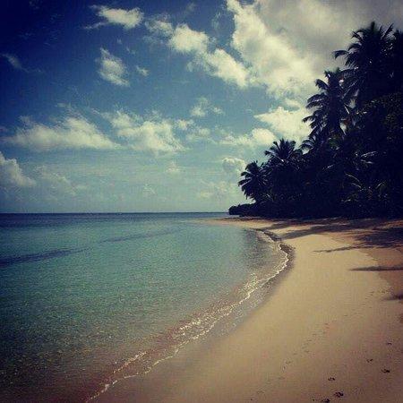 Grand Bahia Principe El Portillo : Mayo 2014 El Paraíso♡