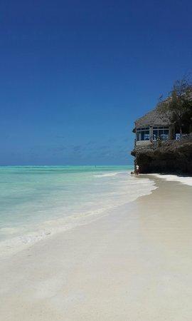 La Papaye Verte: Jambiani Beach