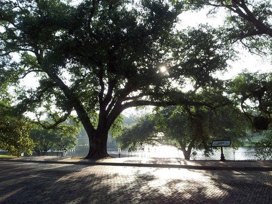 Cane River National Heritage Trail: Morning sunshine on Cane River
