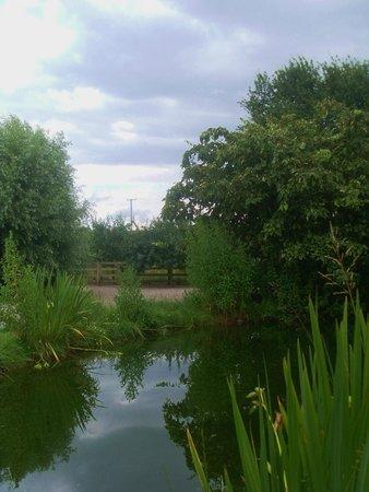 Deerhurst Walton, UK : garden