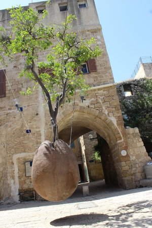 Jaffa Old City : Artistic Tree