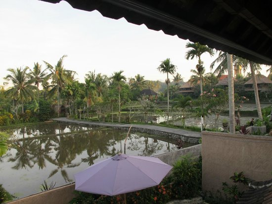 Bali Breeze Bungalows: View from upstairs