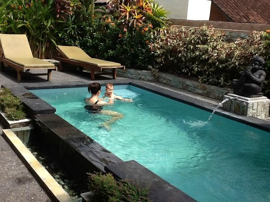Bali Breeze Bungalows: Our pool