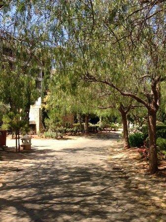Le Meridien Limassol Spa & Resort: the road to the villas